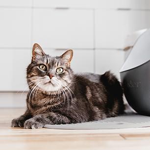 Tapis à litière pour chat LitterLocker Matériel souple et léger