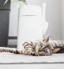 LitterLocker Design Cat Litter Disposal System lifestyle